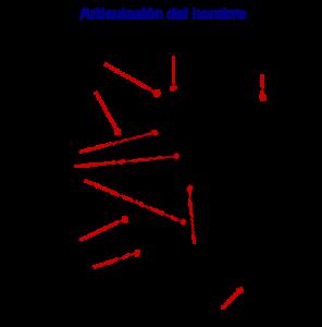 hombro lesión tendón supraespinoso electrolisis