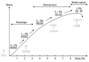 lesión que afecta al tendón